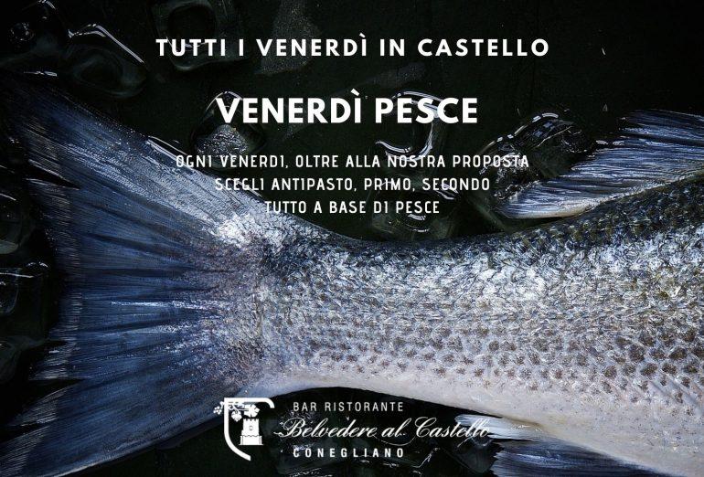 Lunch - Fish - Conegliano